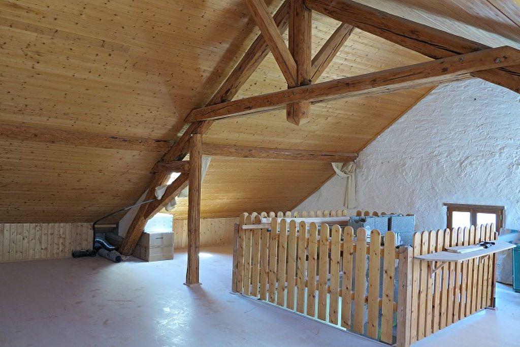 Maison à vendre 6 140m2 à Saint-Julien-en-Genevois vignette-6