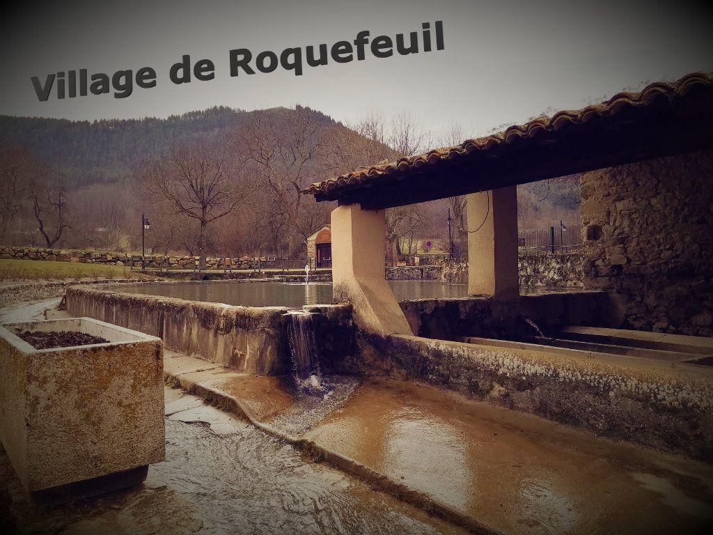 Maison à vendre 2 235m2 à Roquefeuil vignette-7