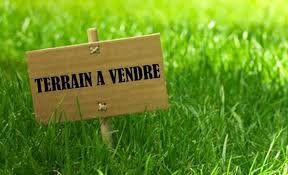 Terrain à vendre 0 467m2 à Saint-Maurice-de-Beynost vignette-1