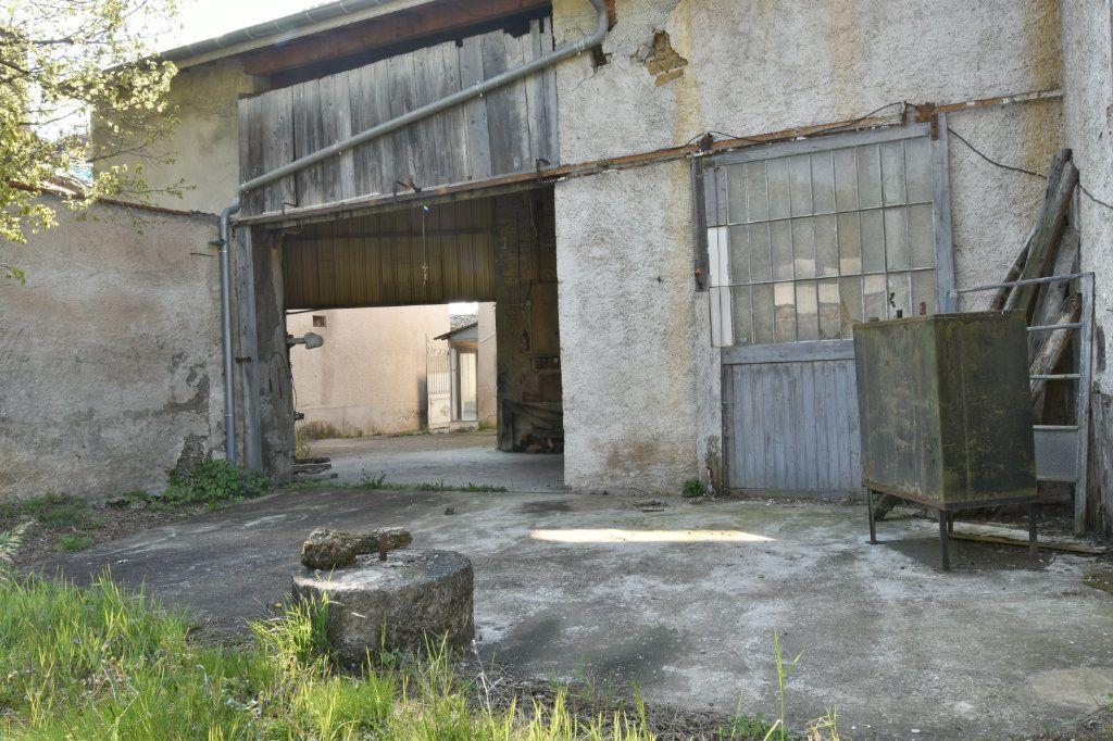 Maison à vendre 4 109m2 à Saint-Maurice-de-Beynost vignette-3