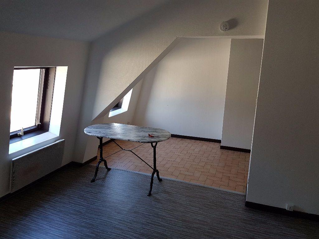 Appartement à louer 1 20.04m2 à Nancy vignette-4
