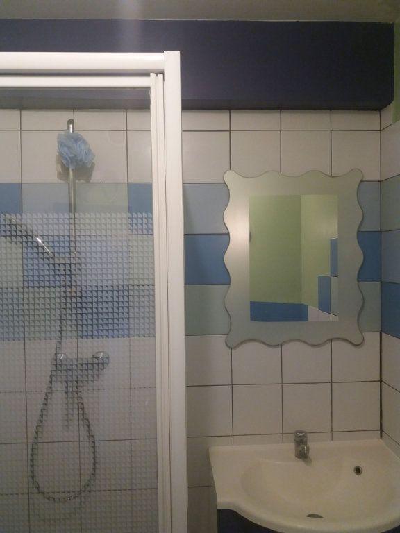 Appartement à louer 2 43m2 à Grenoble vignette-5