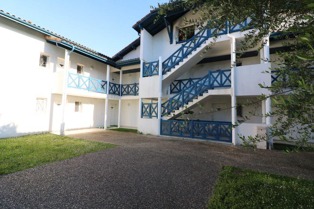 Appartement à vendre 3 69m2 à Saint-Martin-de-Hinx vignette-1