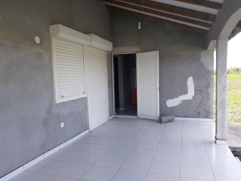 Appartement à louer 3 47m2 à Le Moule vignette-2