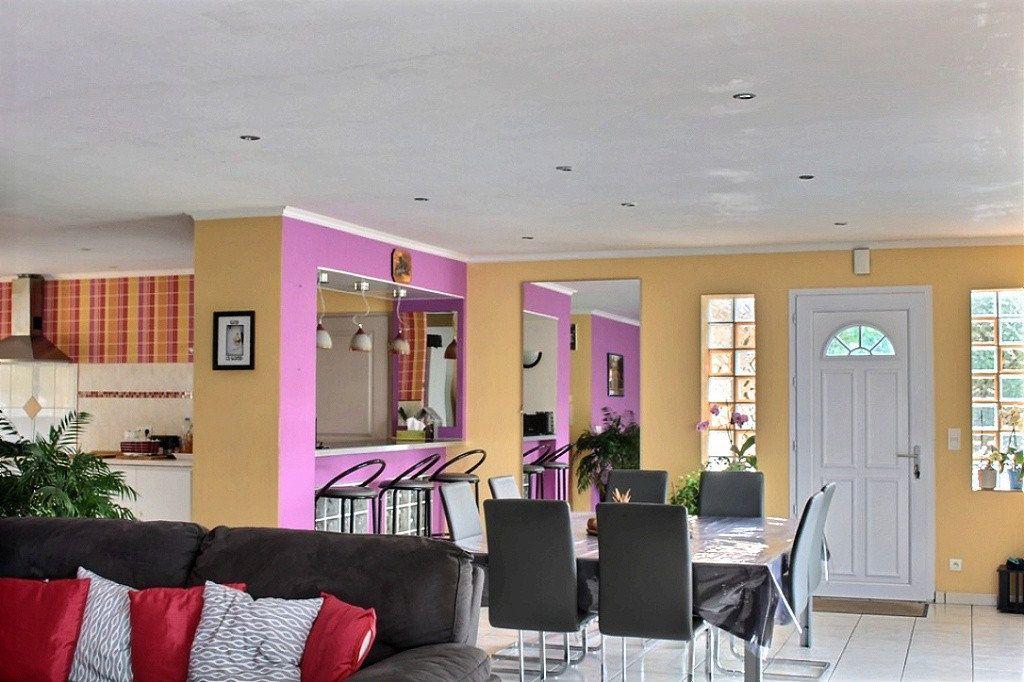 Maison à vendre 6 149.1m2 à Escoubès vignette-3