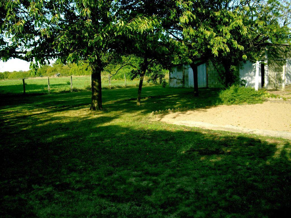 Terrain à vendre 0 800m2 à Châtenoy-le-Royal vignette-3