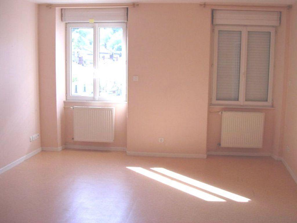 Appartement à louer 2 45m2 à Mazamet vignette-1