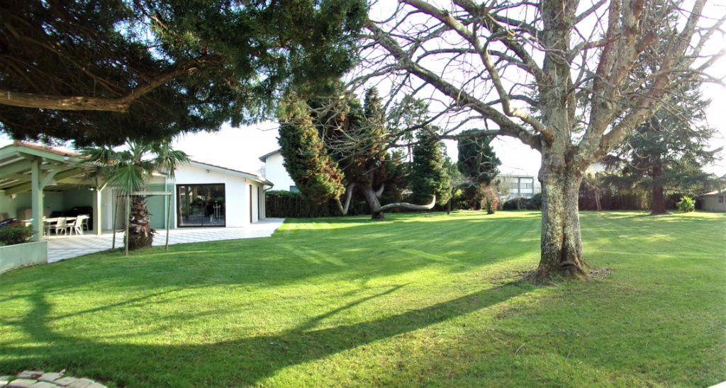 Maison à vendre 6 215m2 à Biarritz vignette-15