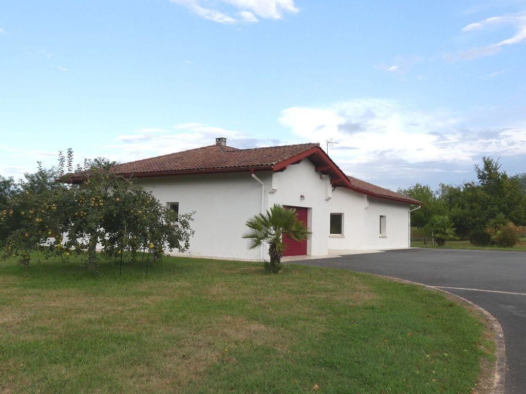 Maison à vendre 5 151m2 à Saubrigues vignette-1