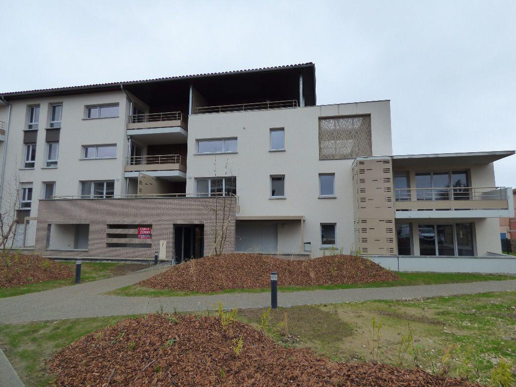 Appartement à louer 1 29.07m2 à Tournefeuille vignette-9
