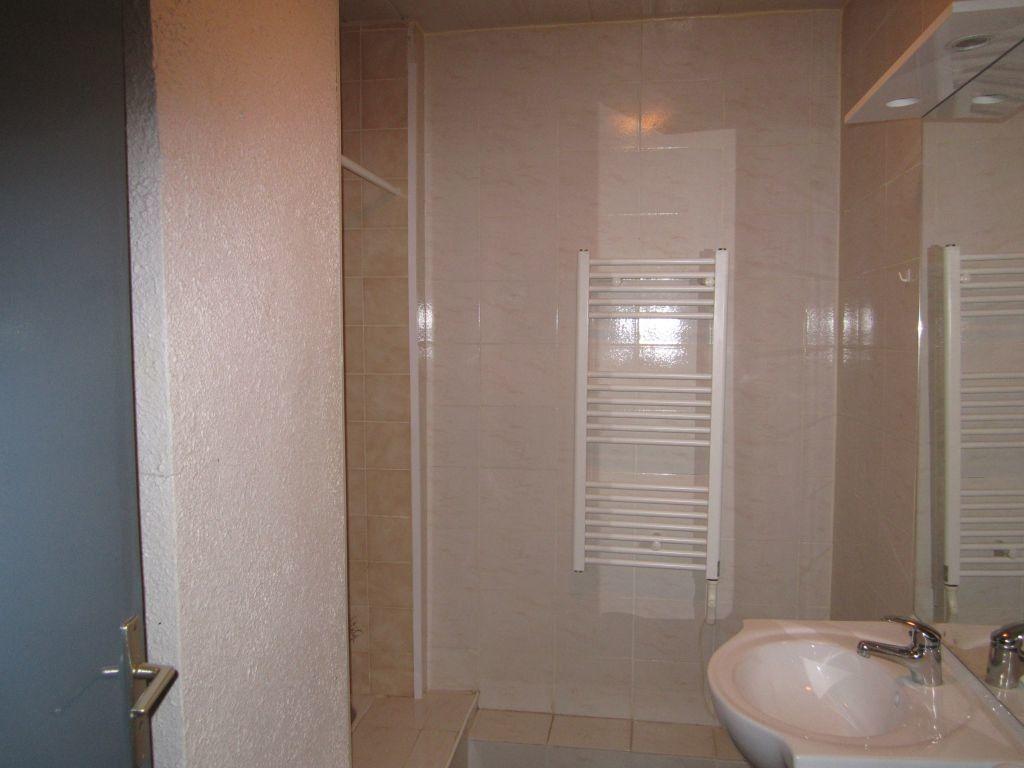 Appartement à louer 2 49m2 à Sisteron vignette-5