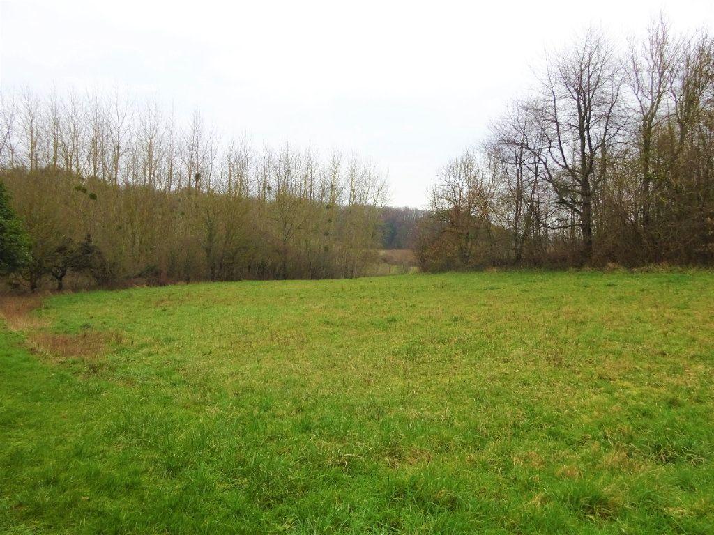 Terrain à vendre 0 1191m2 à Montigny-Lengrain vignette-3