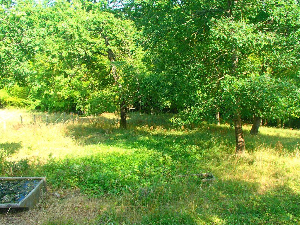 Terrain à vendre 0 1631m2 à Beaumont-sur-Lèze vignette-2