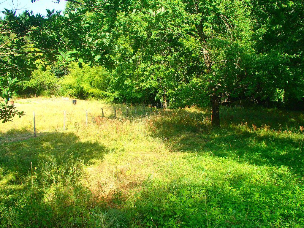 Terrain à vendre 0 1631m2 à Beaumont-sur-Lèze vignette-7