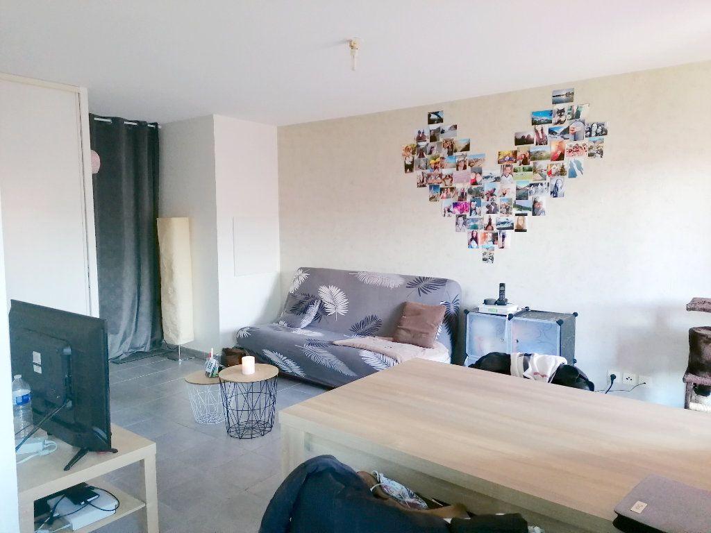 Appartement à louer 2 45.72m2 à La Salvetat-Saint-Gilles vignette-3