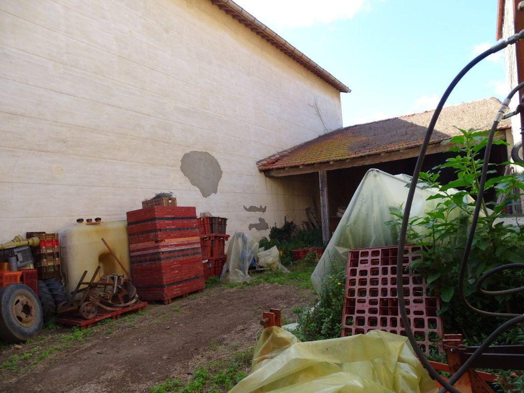 Maison à vendre 0 426m2 à Torreilles vignette-1