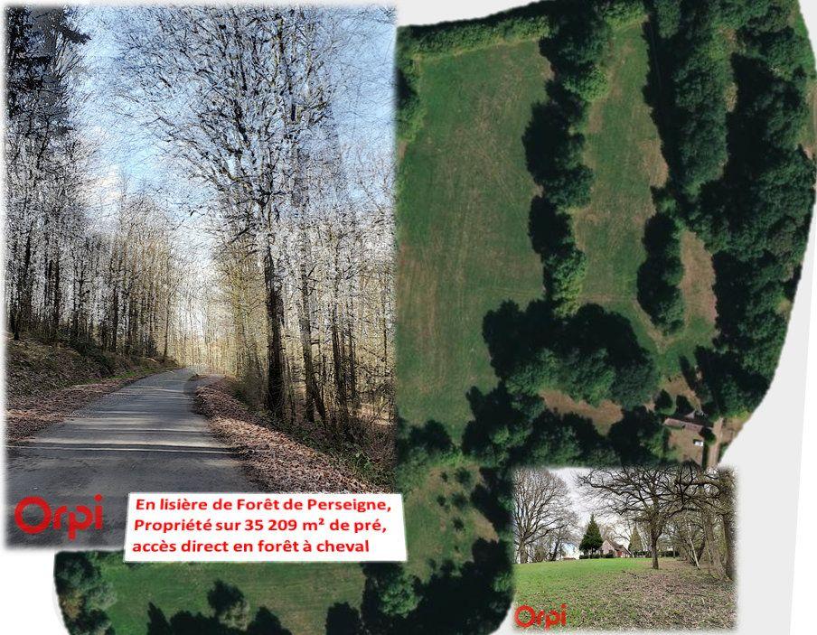 Maison à vendre 4 140m2 à La Fresnaye-sur-Chédouet vignette-4