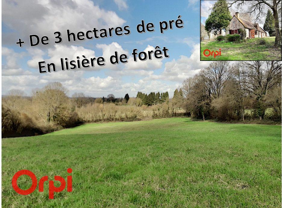 Maison à vendre 4 140m2 à La Fresnaye-sur-Chédouet vignette-16
