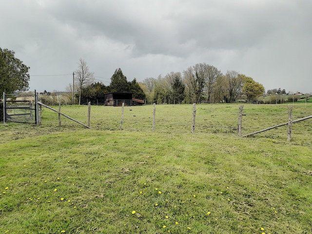 Maison à vendre 6 120m2 à Sougé-le-Ganelon vignette-3