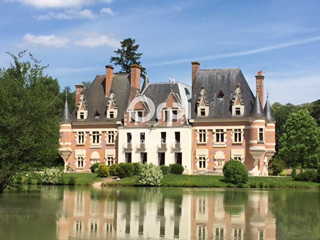 Maison à vendre 10 500m2 à Romorantin-Lanthenay vignette-1