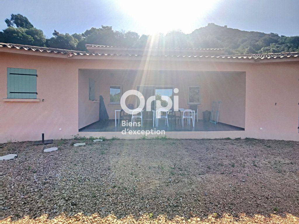 Maison à vendre 6 150m2 à Porto-Vecchio vignette-13