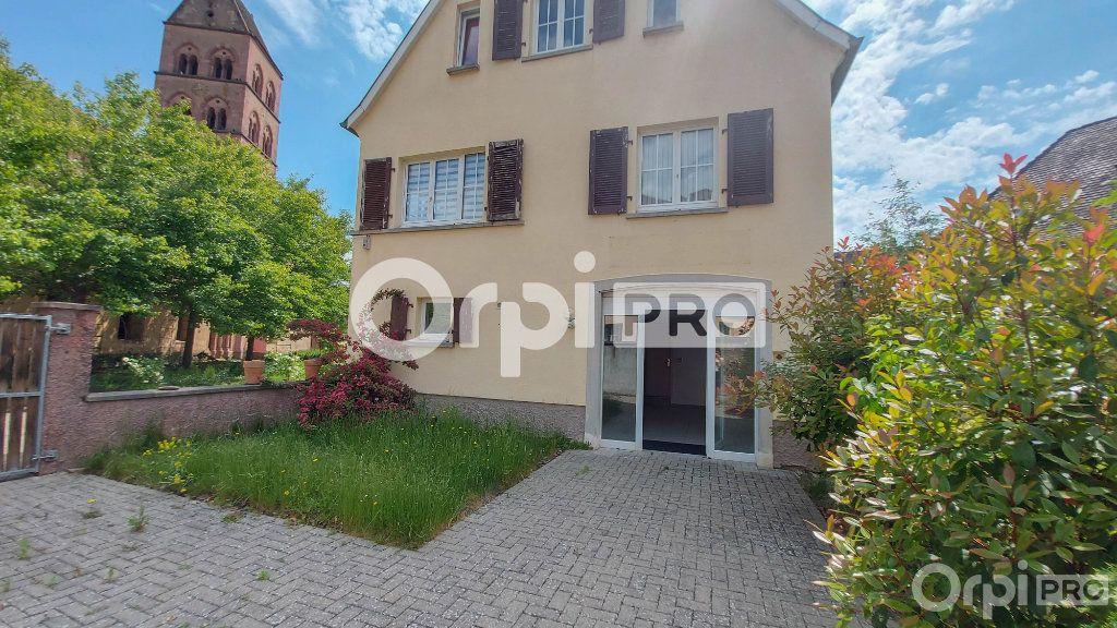 Local commercial à louer 0 54m2 à Sigolsheim vignette-5