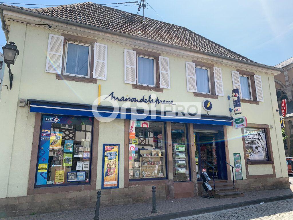 Fonds de commerce à vendre 0 93m2 à Erstein vignette-2