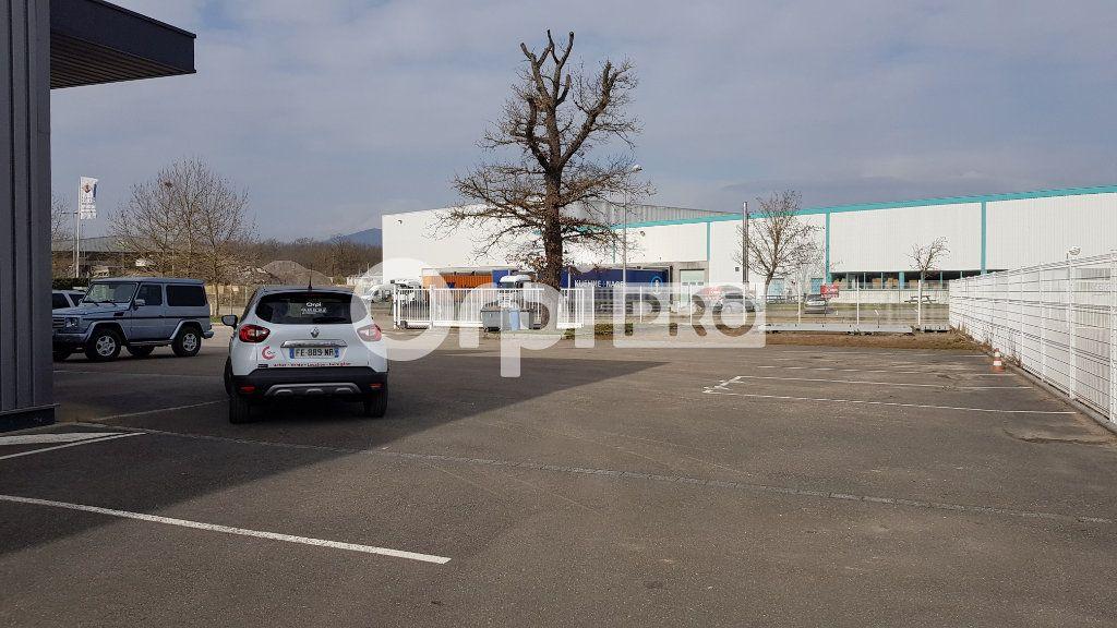 Entrepôt à louer 0 325m2 à Wittenheim vignette-5