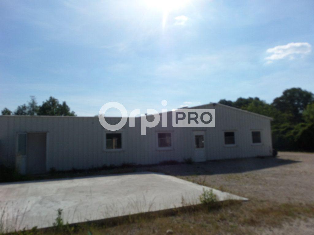 Local d'activité à vendre 0 250m2 à Souppes-sur-Loing vignette-5