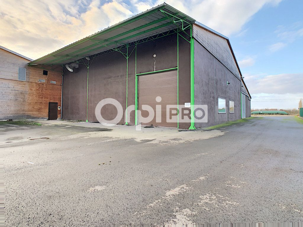 Local d'activité à vendre 0 6300m2 à Baule vignette-11