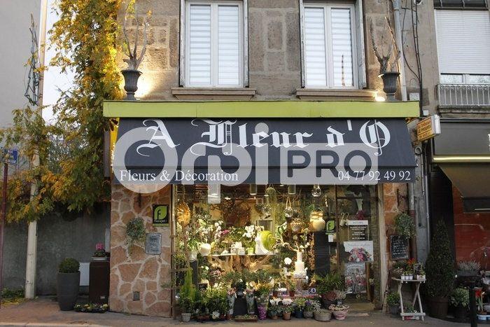 Fonds de commerce à vendre 0 100.73m2 à Saint-Étienne vignette-2