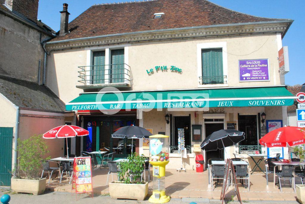 Local commercial à vendre 0 161m2 à Ménétréol-sous-Sancerre vignette-2