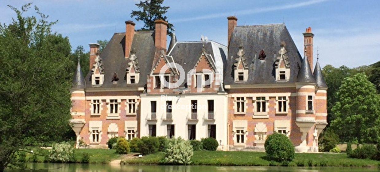Maison à vendre 500m2 à Romorantin-Lanthenay