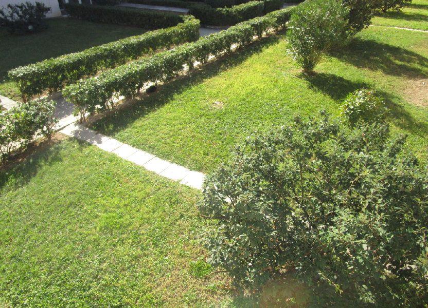 Appartement à vendre 36m2 à Montfavet - Avignon