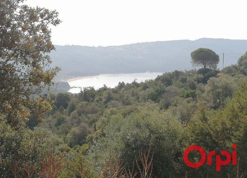 Terrain à vendre 9100m2 à Coti-Chiavari