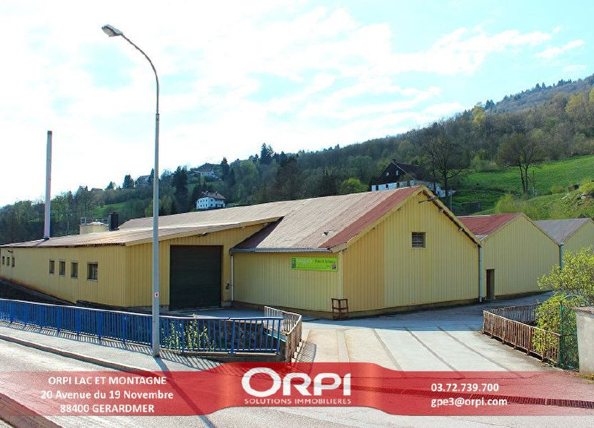 Immeuble à vendre 3441m2 à La Bresse