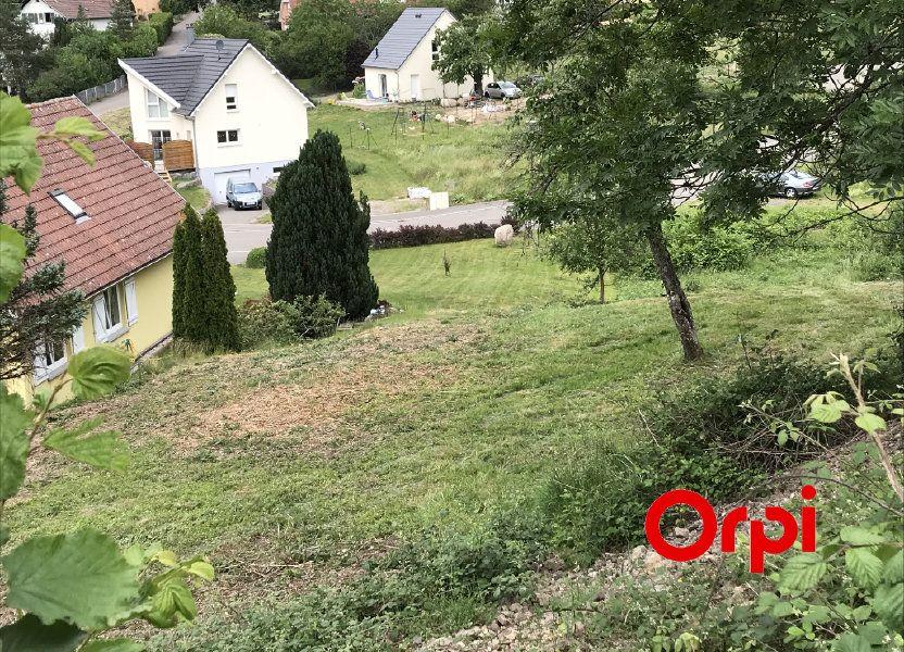 Terrain à vendre 552m2 à Oderen