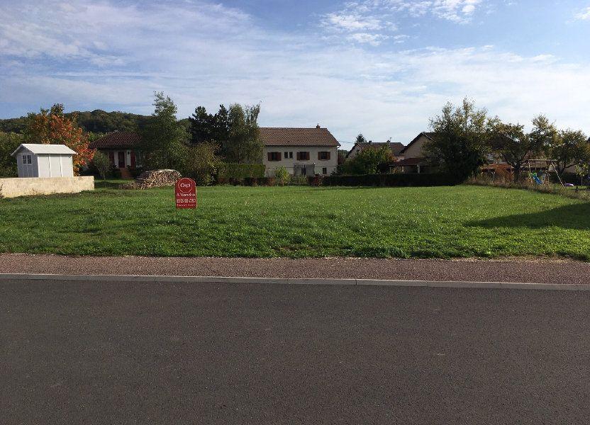 Terrain à vendre 1403m2 à Culmont