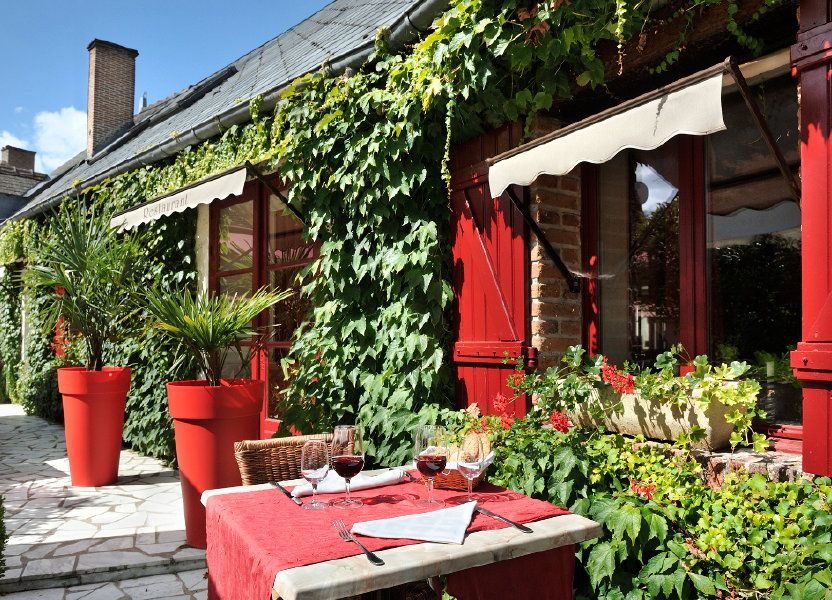 Maison à vendre 380m2 à Tour-en-Sologne