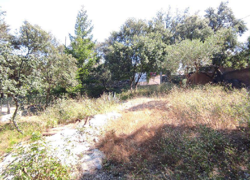 Terrain à vendre 230m2 à Balaruc-les-Bains