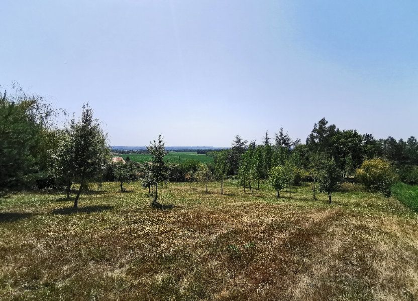 Terrain à vendre 2500m2 à Lelin-Lapujolle