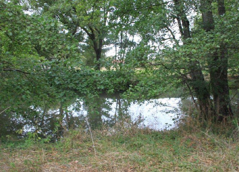 Terrain à vendre 13519m2 à Neung-sur-Beuvron