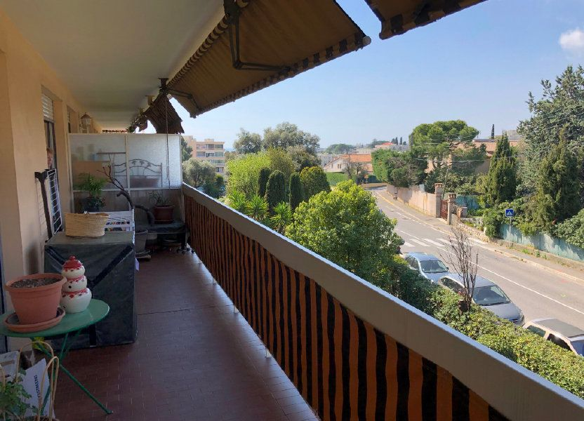 Appartement à louer 49.6m2 à Antibes