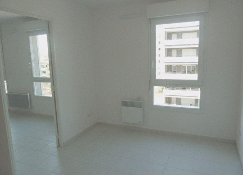 Appartement à louer 33m2 à Marseille 8