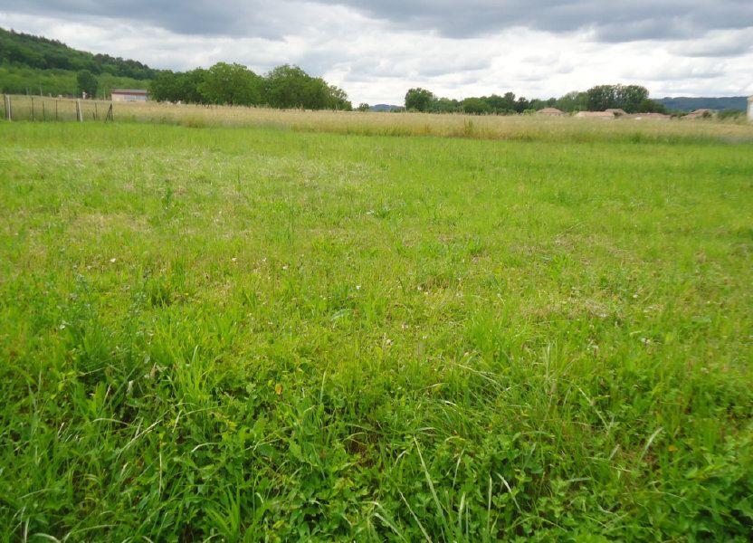 Terrain à vendre 1248m2 à Terrasson-Lavilledieu