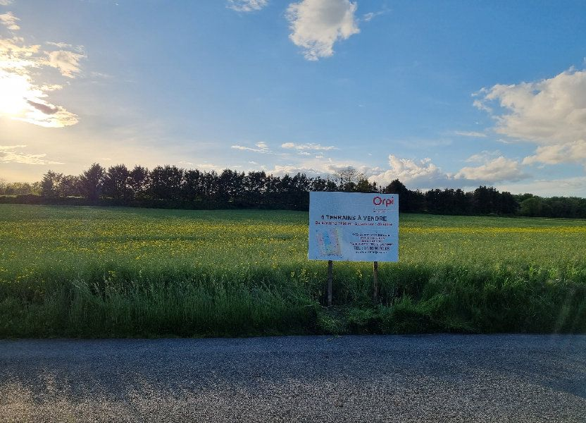 Terrain à vendre 895m2 à Château-Landon
