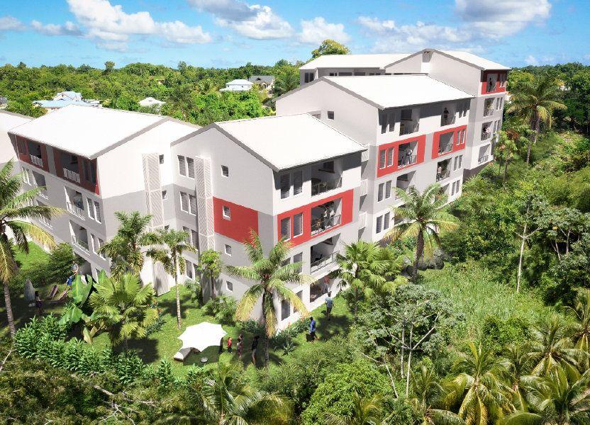 Appartement à vendre 59.15m2 à Les Abymes