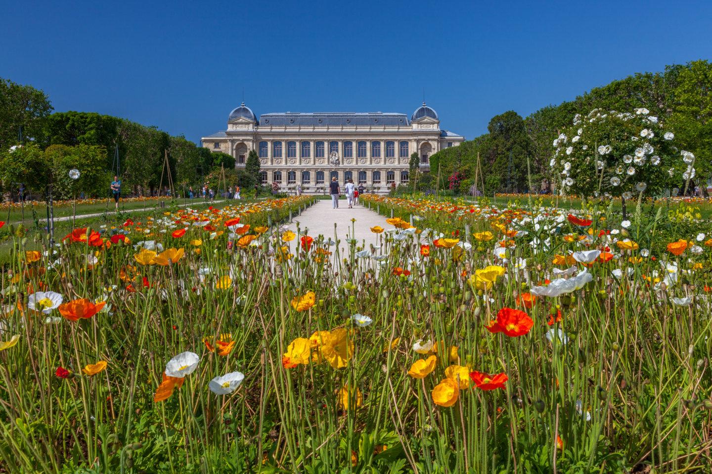 Emejing image jardin des plantes paris contemporary for Jardin des plante