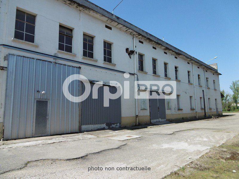 Entrepôt à louer 0 6000m2 à Montauban vignette-5