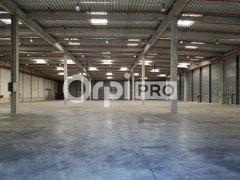 Entrepôt à louer 0 25809m2 à Brétigny-sur-Orge vignette-4